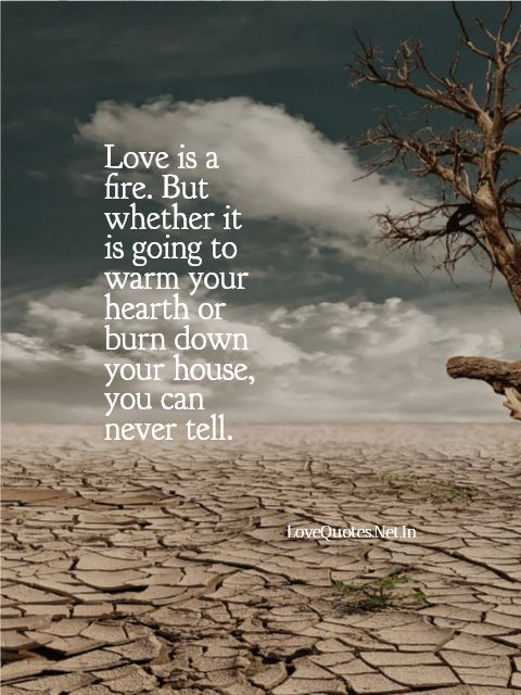 Love Is a Fire