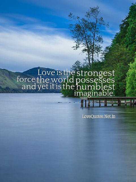 Love is The Strongest Force