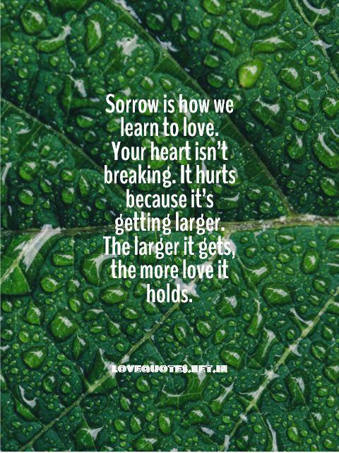 Sorrow Is How We Learn To Love