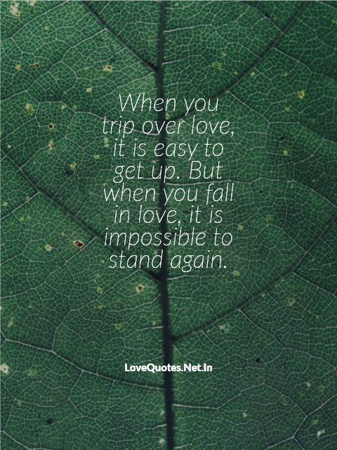 When You Trip Over Love